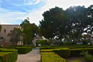 Balboa-Park-by-Cali-Tower-HDR2.jpg